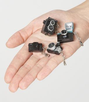 Camera zipper